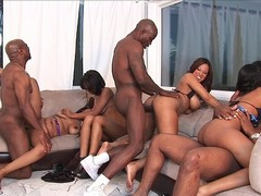 Aryana Adin, Brooklyn Carter, Divine, Evanni Solei, Janae Foxx, Luxury Play, Natasha Dulce, and..